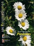 Portada Revista Los Reumatismos Marzo-Abril 2007